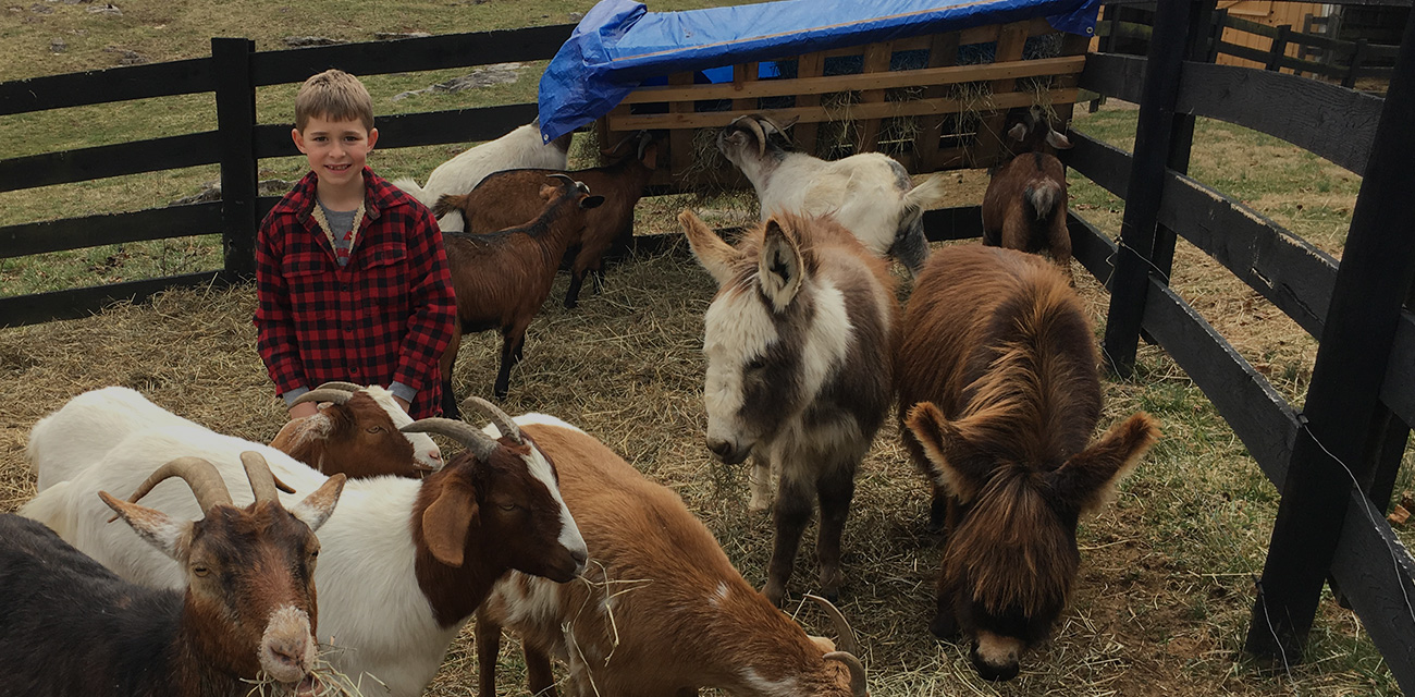Not Your Typical Orthodontic Practice in Union, WV | Farming Smiles